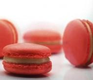 Aardbeien Macarons bezorgen in Leiden