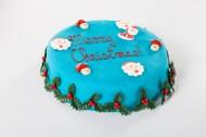 Blauwe Kersttaart bezorgen in Den Haag