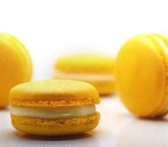Citroen Macarons bezorgen in Leiden
