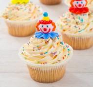 Kinderfeestcupcakes bezorgen in Leiden