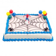 Spiderman Taart bezorgen in Leiden