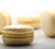 Vanille Macarons bezorgen in Leiden